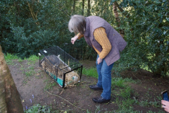 badger-release
