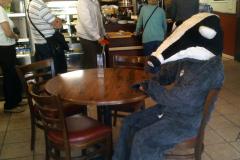 cafe-badger