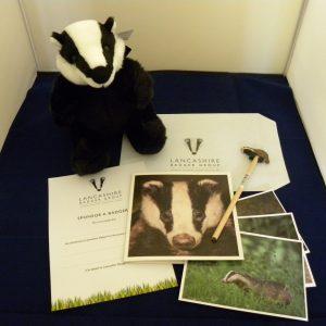 Sponsor a Lancashire Badger