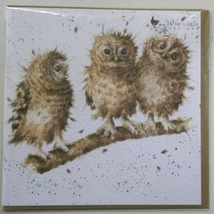 Wrendale Designs - You First - Tawny Owl Owlets - Greeting Card