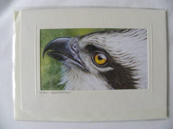 ARTful Creatures Blank Greeting Card Osprey Observation