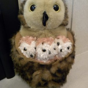 The Puppet Company - Hide-Away Puppets - Tawny Owl With Babies