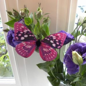 Magnetic Paper Butterflies - Various Colours