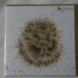 Wrendale Designs - Awakening - Hedgehog - Greeting Card